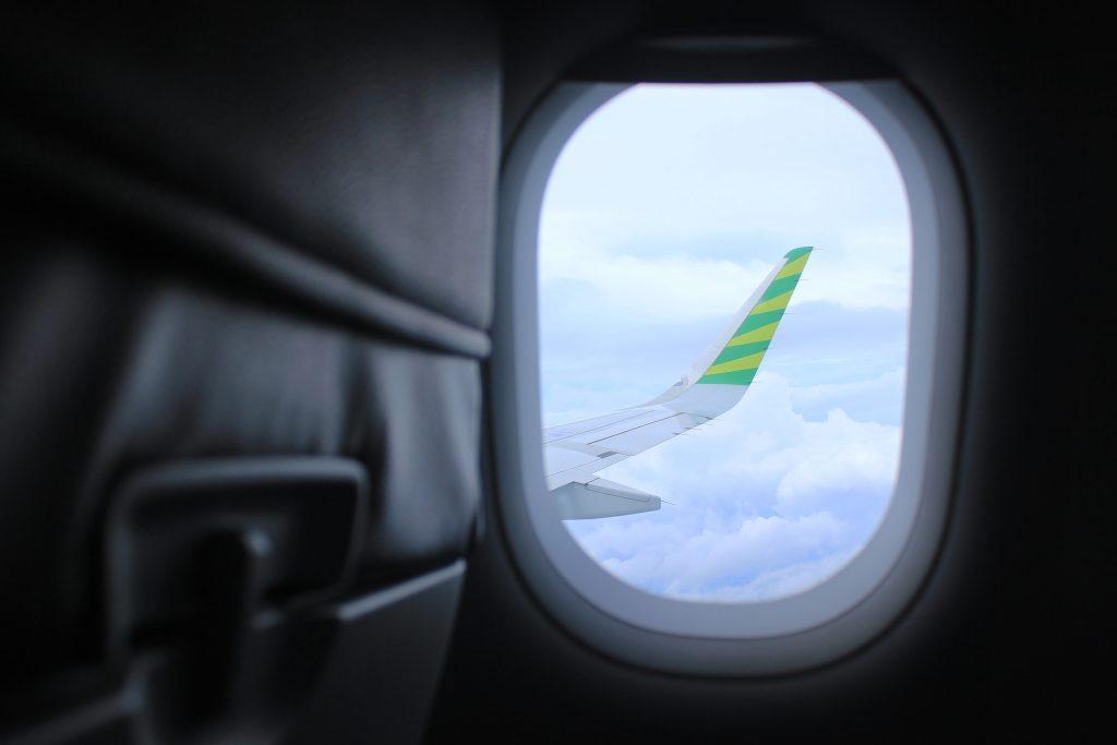 Cum apare frica de zbor?