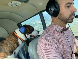 eduard pilots n paws